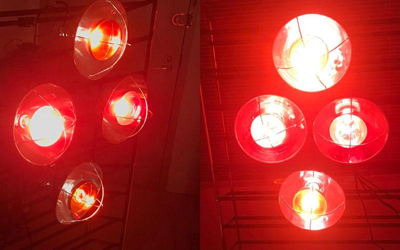 Đèn hồng ngoại